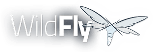 WildFly Java Application Server